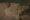 Долина Святого Саввы с высоты птичьего полета